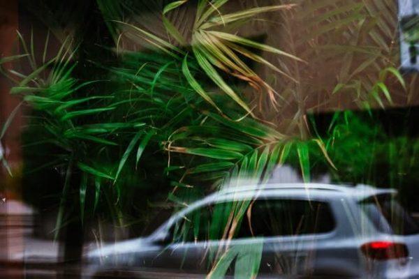 Fahrzeug, im Hintergrund sind Blätter zu sehen
