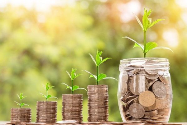 Zu sehen sind aufeinandergestapelte Münzen, aus denen jeweils eine kleine Pflanze wächst.